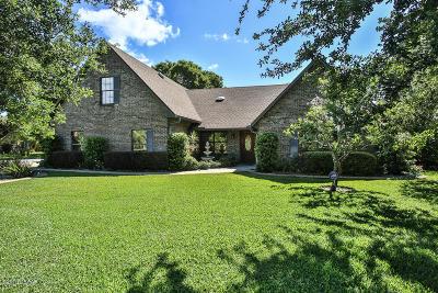 Ormond Beach FL Single Family Home For Sale: $335,000