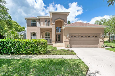 Palm Coast Single Family Home For Sale: 6 Flamingo Court