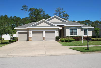 Ormond Beach Single Family Home For Sale: 25 Abacus Avenue