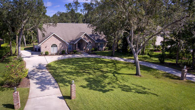 Ormond Beach Single Family Home For Sale: 59 Shadowcreek Way
