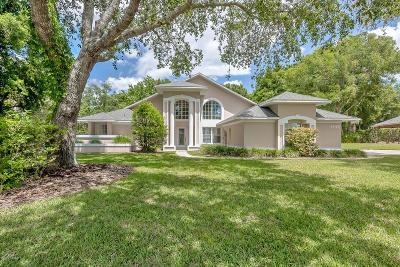 Ormond Beach Single Family Home For Sale: 1449 Ioni Court