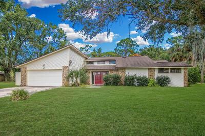 Daytona Beach Single Family Home For Sale: 621 Pelican Bay Drive