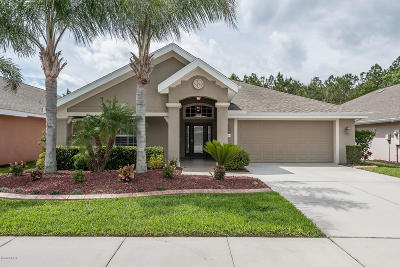 Port Orange Single Family Home For Sale: 1763 Weeping Elm Circle
