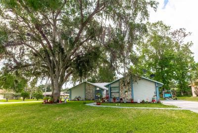 Palm Coast Single Family Home For Sale: 1 Blaketon Court