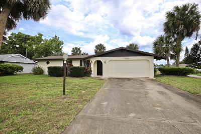 Daytona Beach Single Family Home For Sale: 1191 Margina Avenue