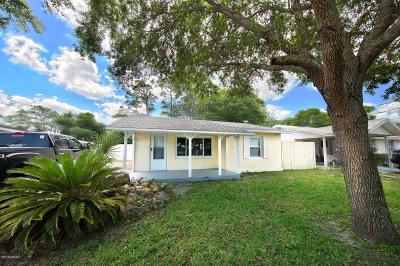 Port Orange Single Family Home For Sale: 517 Lafayette Street