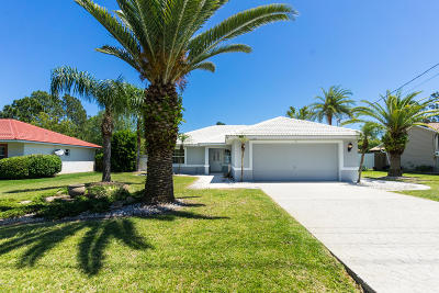 Palm Coast Single Family Home For Sale: 205 Pritchard Drive