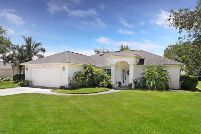 Port Orange Single Family Home For Sale: 800 Ashton Lakes Boulevard