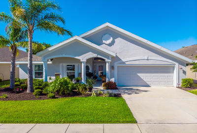 Port Orange Single Family Home For Sale: 1719 Weeping Elm Circle