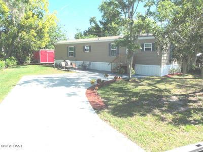 Port Orange Single Family Home For Sale: 1113 Millbrook Avenue