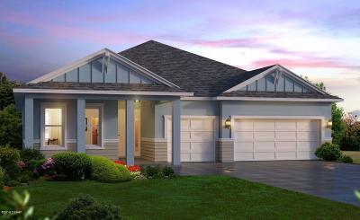 Port Orange Single Family Home For Sale: 6276 W. Fallsgrove Lane