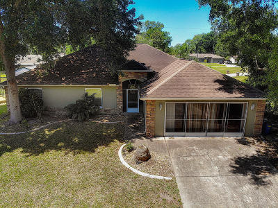 Edgewater Single Family Home For Sale: 3304 Needle Palm Drive