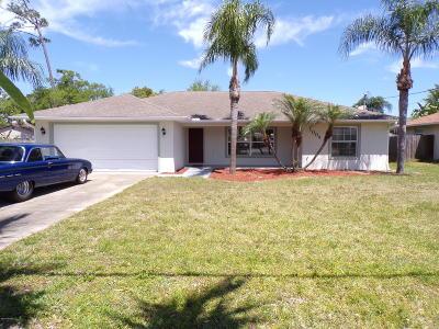 New Smyrna Beach Single Family Home For Sale: 1004 Conrad Drive #1