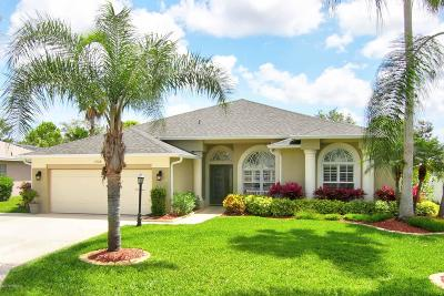 Port Orange Single Family Home For Sale: 2108 Springwater Lane
