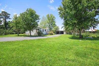New Smyrna Beach Single Family Home For Sale: 684 Sandberg Lane