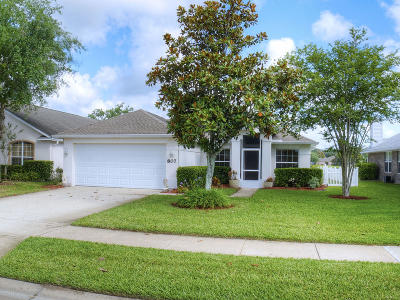 Edgewater Single Family Home For Sale: 807 Star Reef Lane