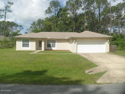 Palm Coast Single Family Home For Sale: 67 Utah Place