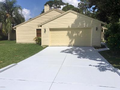 Daytona Beach Single Family Home For Sale: 136 S Gull Drive