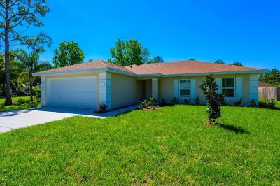 Palm Coast Single Family Home For Sale: 16 Radium Lane