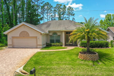 Palm Coast Single Family Home For Sale: 91 Brittany Lane