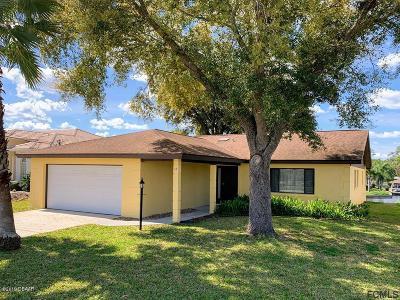 Palm Coast Single Family Home For Sale: 18 Criston Court