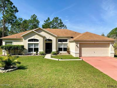 Palm Coast Single Family Home For Sale: 16 Sentinel Trail