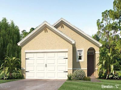 New Smyrna Beach Single Family Home For Sale: 2905 Sime Street