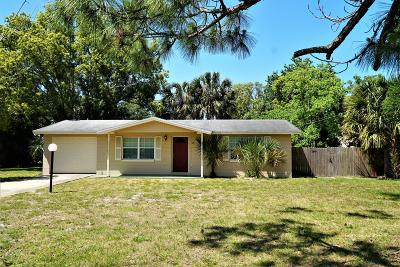 Port Orange Single Family Home For Sale: 290 Commonwealth Boulevard