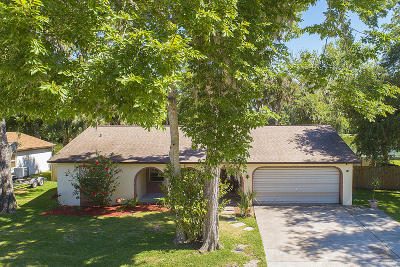Ormond Beach Single Family Home For Sale: 1008 Calle Grande Street