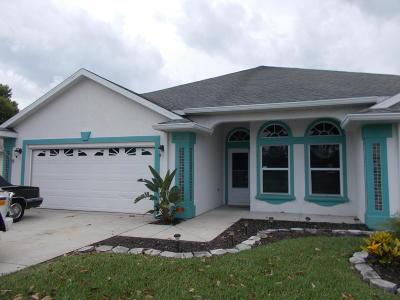New Smyrna Beach Single Family Home For Sale: 2748 Turnbull Estates Drive