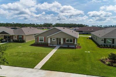 New Smyrna Beach Single Family Home For Sale: 3305 Meleto Boulevard