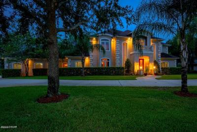 Ormond Beach Single Family Home For Sale: 35 Indian Springs Drive