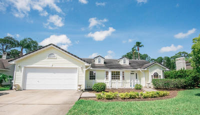 Daytona Beach Single Family Home For Sale: 516 Spotted Sandpiper Drive