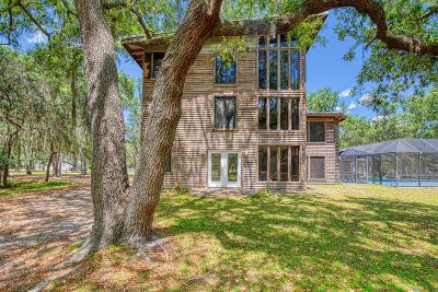 Ormond Beach Single Family Home For Sale: 131 Pinto Lane