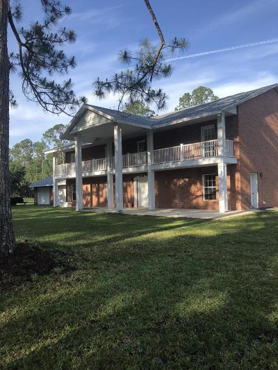 New Smyrna Beach Single Family Home For Sale: 724 Co Rd 415