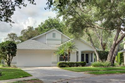 Pelican Bay, Ashton Lakes, Cypress Head, Sabal Creek, Sanctuary On Spruce Creek, Spruce Creek Fly In, Villages Of Royal Palm, Waters Edge Single Family Home For Sale: 6090 Jasmine Vine Drive