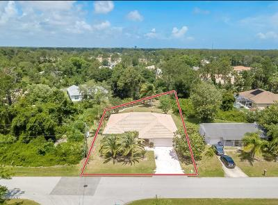 Palm Coast Single Family Home For Sale: 6 Princeton Lane