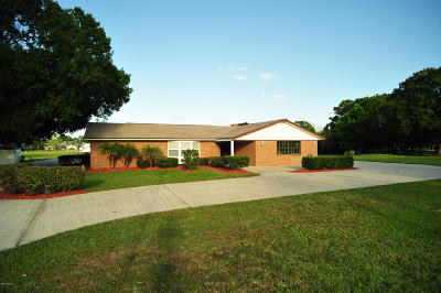 Port Orange Single Family Home For Sale: 160 W Country Circle Drive