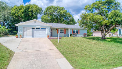 Volusia County Single Family Home For Sale: 1464 Galena Terrace
