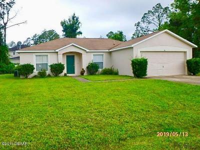 Palm Coast Single Family Home For Sale: 36 Roxboro Drive