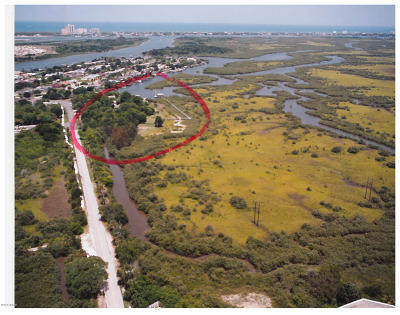 Volusia County Residential Lots & Land For Sale: 211 Inlet Shores Drive