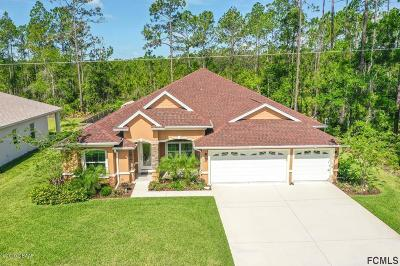 Palm Coast Single Family Home For Sale: 112 Edward Drive