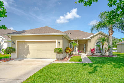 Port Orange Single Family Home For Sale: 5343 Plantation Home Way