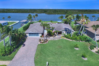 Edgewater Single Family Home For Sale: 123 Palm Breeze Drive