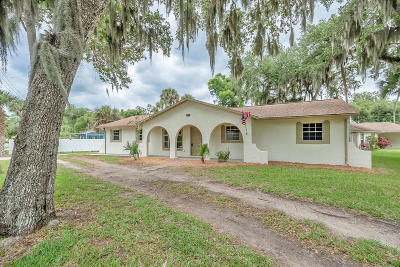 Edgewater Single Family Home For Sale: 2948 Mango Tree Drive