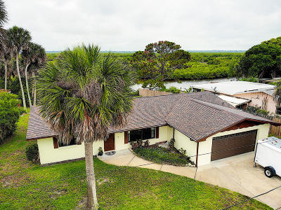 New Smyrna Beach Single Family Home For Sale: 14 Oak Tree Drive