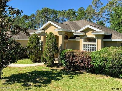 Palm Coast Single Family Home For Sale: 39 Woodlawn Drive
