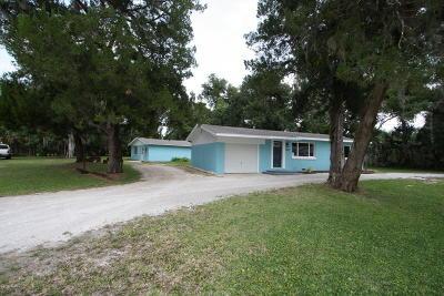 New Smyrna Beach Single Family Home For Sale: 1375 James Street