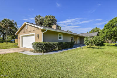 Ormond Beach Single Family Home For Sale: 20 Twin River Drive