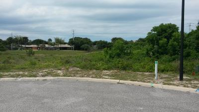 Volusia County Residential Lots & Land For Sale: 8 Aqua Clara